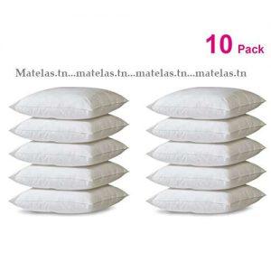 Lot 10 Oreillers super confort 50x70